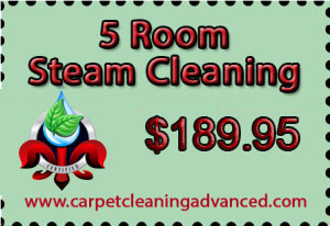 5 Room Steam Cleaning Service