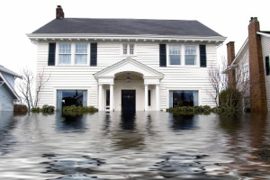 Flood Water Damage Cleanup Service in Louisville