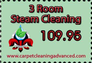 3 Room Steam Carpet Cleaning Special