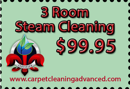 About Louisville Ky Carpet Cleaners Advanced Cleaning