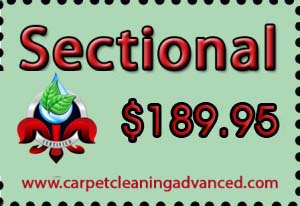 Sectional Upholstery Cleaning Coupon