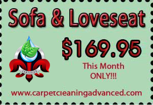 Sofa & Loveseat Upholstery Cleaning Special