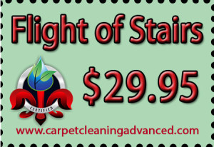 Flight of Stairs Floor Cleaning Special
