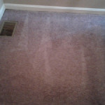 residential-carpet-cleaning-job-main