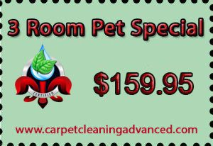 Louisville Advanced Carpet Cleaning Hardwood Cleaning